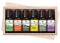 Set of 6 Organic Essential Oils 10 ml each