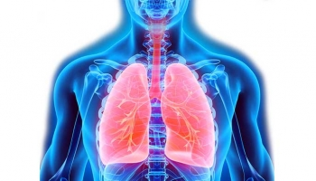 Aromatherapy for Respiratory System Support